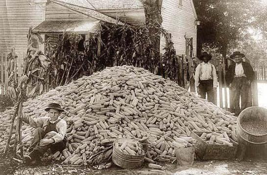 Two men and a boy with a large pile of corn. It was made in between 1909 and 1932.