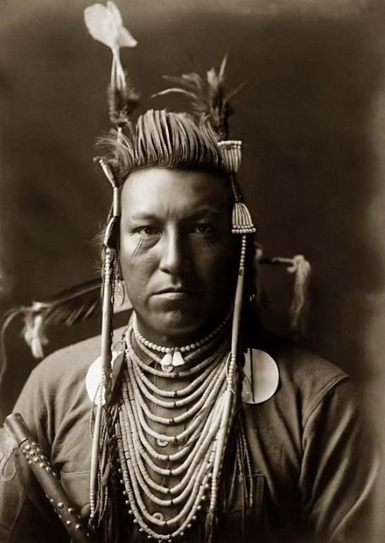 Swallow Bird, a handsome Crow Indian in Montana. It was taken in 1908