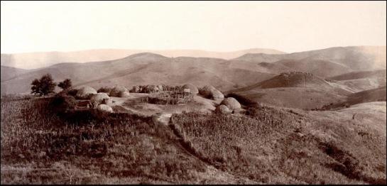 Kaffir Kraal  Zulu Land 1903 (7)