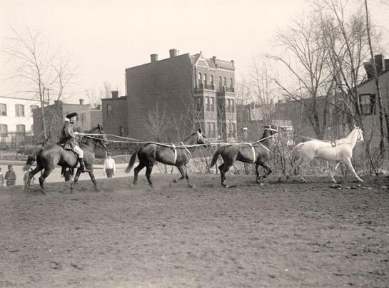 Society Circus Horses. It was made between 1910 and 1917