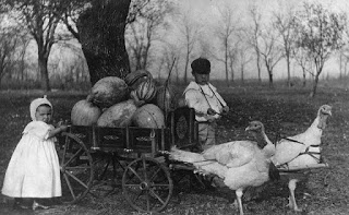 turkey-pulled-wagon